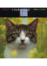 Sasuke! My dear cat,by Masahisa Fukase / Itoshiki Neko Yo